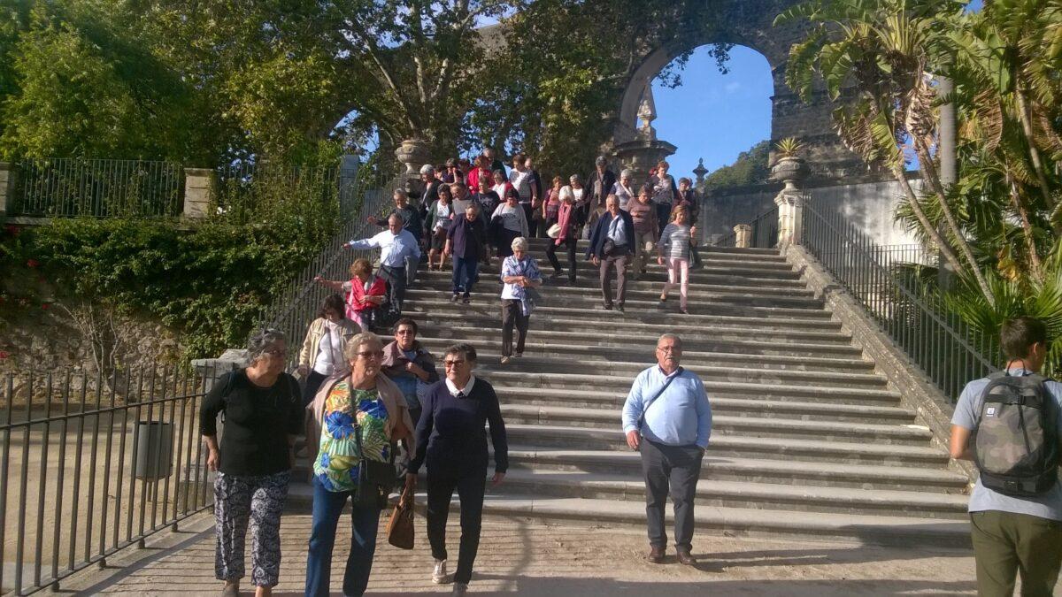 passeio_senior_2018_grupo_escadaria_jardim_botanico_12