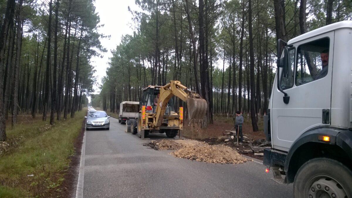 estrada_da_cinzeira_arrancar_raizes